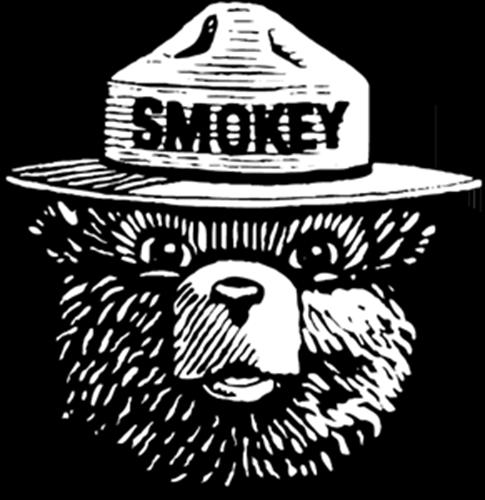 Smokey Bear T-Shirts
